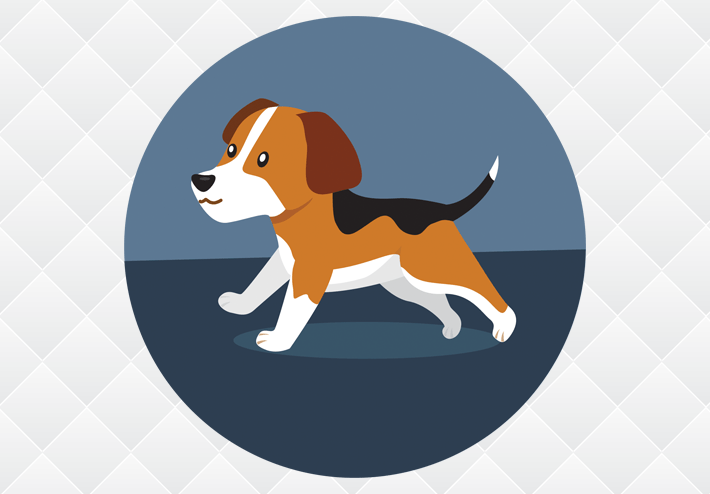 Reliable Recallers: Online Dog Recall Training