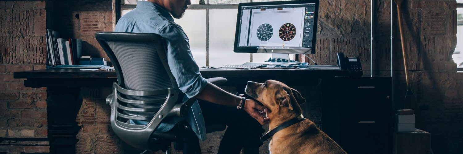 Does your workplace have a dog policy?